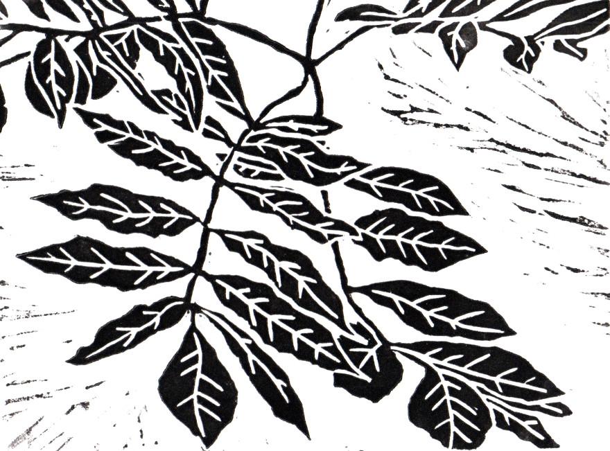 Lino Leaf
